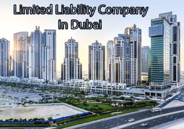 The Pros and Cons of LLC company formation in Dubai